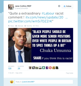 Jane Collins, UKIP MEP, Retweeter Of Fascist Rubbish On Twitter